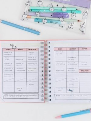 agenda annuel tout ce qui etait pour avant hier