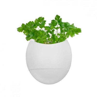 Pots avec arrosage intégré