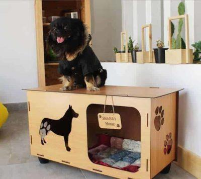 Niche chien personnalisé, Super idées cadeaux