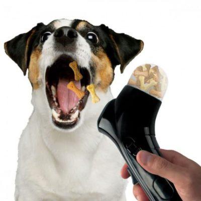 Lanceur de friandises pour chiens