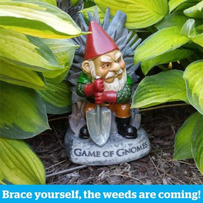 Game of Gnomes Nain de Jardin, Super idées cadeaux