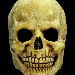 Masque tête de mort, Super idées cadeaux