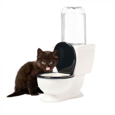 Gamelle en forme WC pour Animaux